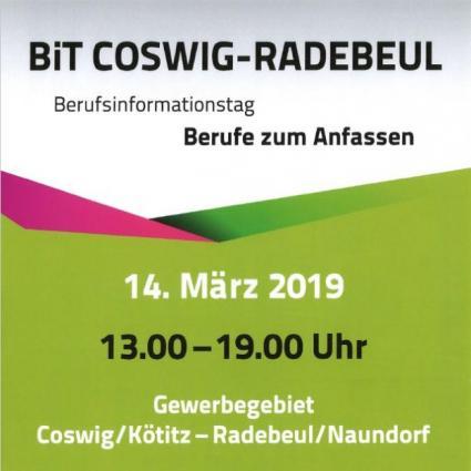 Berufsinformationstag BiT Coswig-Radebeul am 14.03.2019